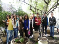 """Our School Garden"" in Technical College ""Mihai Bravu"""